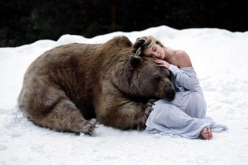 Тотем Медведица