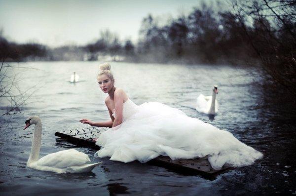 Женские тотемы лебедь