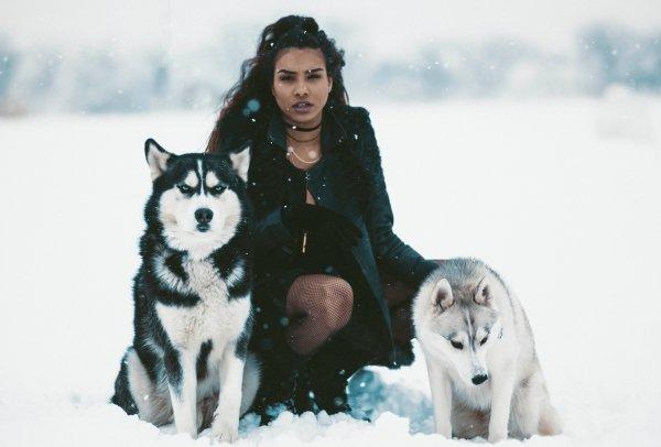 Женские тотемы Волчица