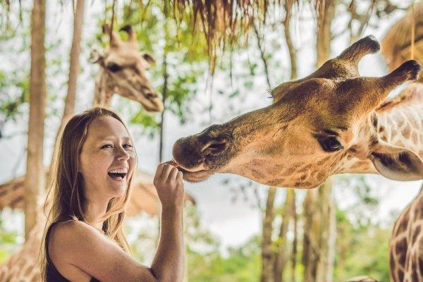 Жирафа женский тотем