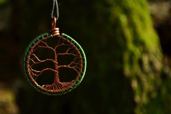 Мировое древо, древо жизни